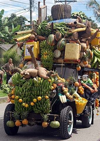 Delivery fruit
